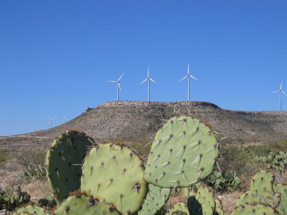 Part of the Desert Sky Wind Farm in Texas. Photo by Pismo. Placed in the public domain by the author. Wikimedia Commons.