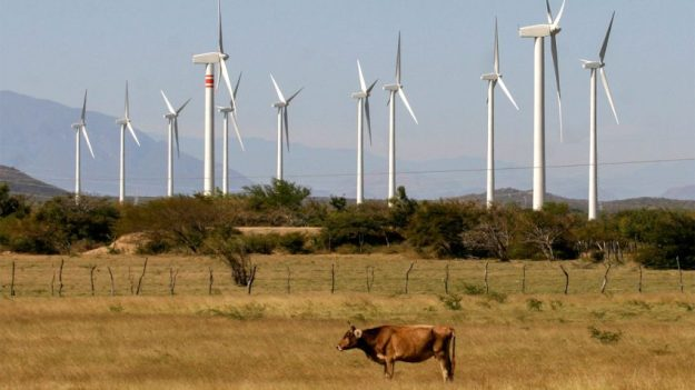 Wind farms on the Isthmus of Tehuantepec in Mexico. L Hernández / Associated Press