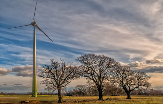The Royal Society for the Protection of Birds, widely known for its lawsuits to stop construction of wind farms in the UK, put up a wind turbine at its headquarters. ecotricity photograph.
