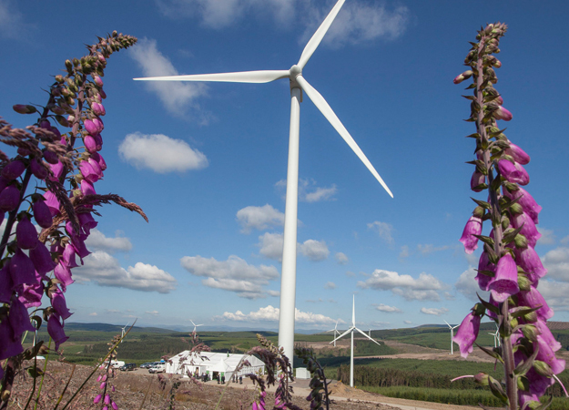Harestanes wind farm in Scotland (Iberdrola image).