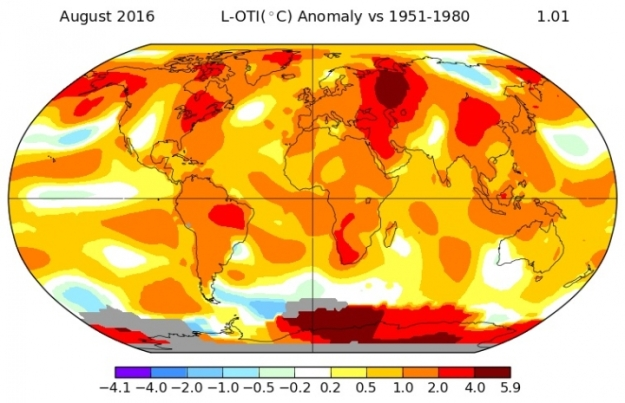 August 2016 temperature anomaly