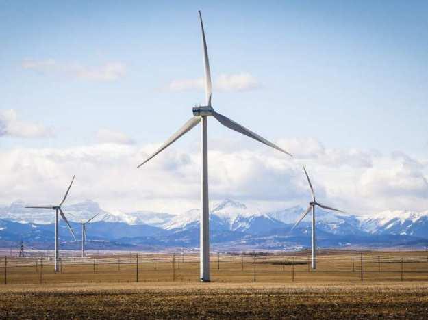 Wind farm near Pincher Creek, Alberta (Jeff McIntosh / The Canadian Press)