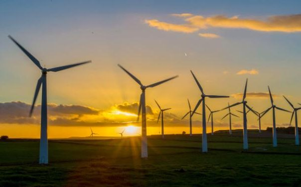 The true cost of wind power – a state secret? (Photo: Graham / Rex Shutterstock)