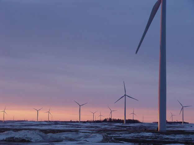 Minnesota wind farm (from Windtech at English Wikipedia, Wikimedia Commons)