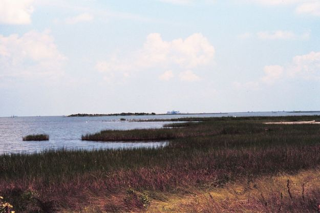 Coast of Louisiana (Photo: Dr Terry McTigue, NOAA, public domain, Wikimedia Commons)