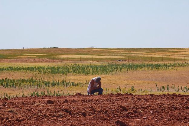 Parched Oklahoma land (Al Jazeera English, Wikimedia Commons)